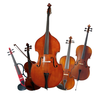 Cuerdas Orquestales